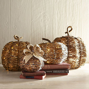 Pier One Imports LED Grapevine Pumpkins